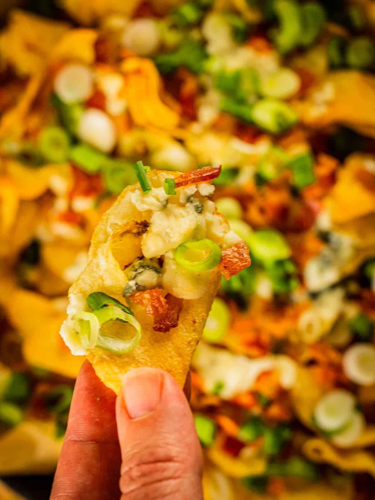 hand holding a kettle chips with blue cheese, bacon and scallions on it