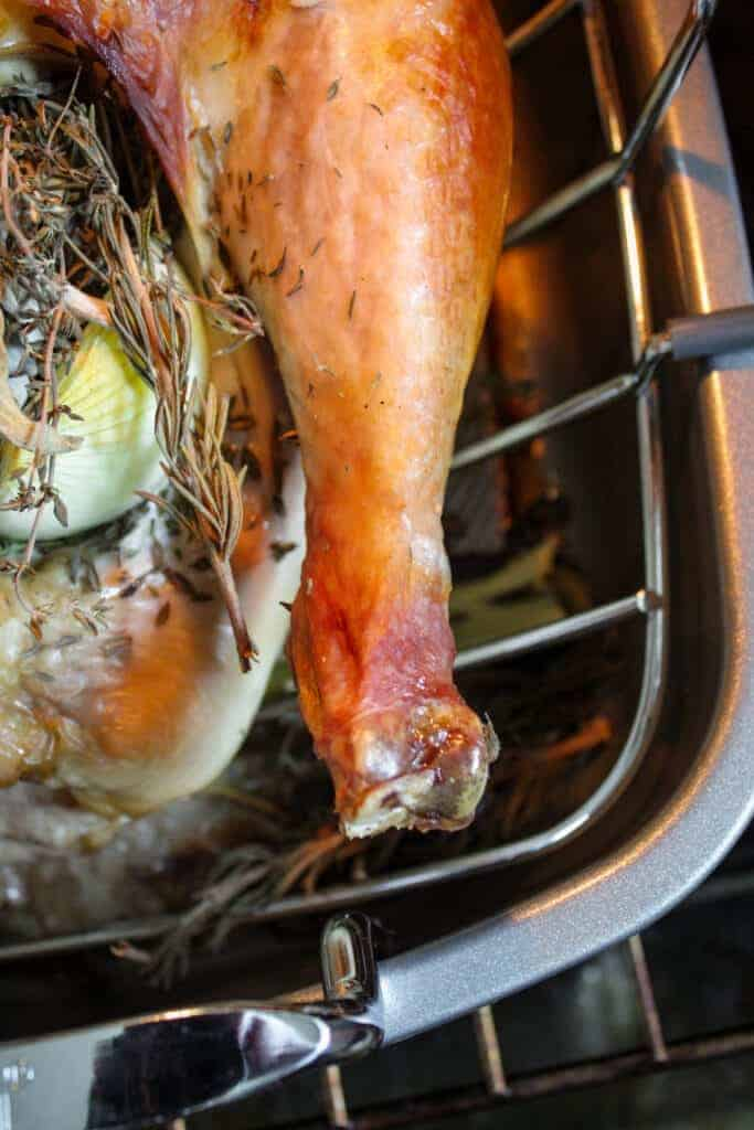 close up shot of a roasted turkey leg on a turkey in a roasting pan in the oven